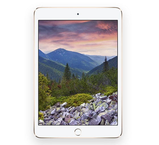Apple iPad mini 3 official8