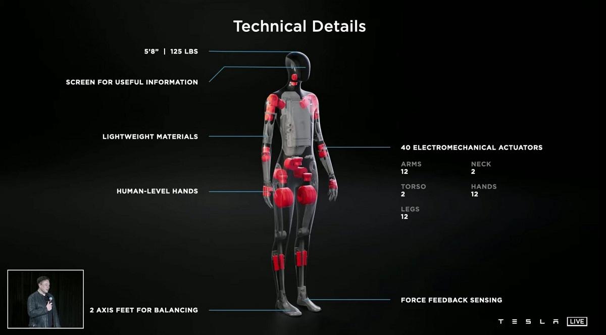 Tesla Bot Optimus